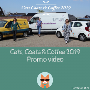 Cats, Coats & Coffee 2019 – Kattentrimsters event