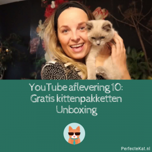 YouTube Afl. 10: Gratis kittenpakketten unboxing